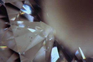 Utilizing the 'wet grading' technique on this diamond, small crystal inclusions appear dark against the reflection of the sponge, while reflective feathers brighten.