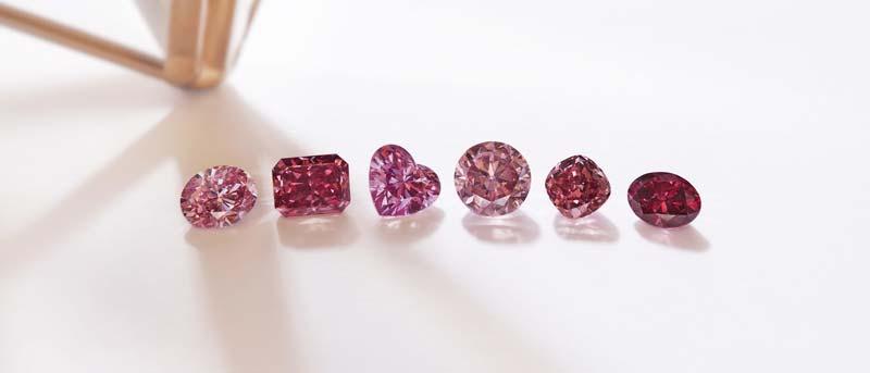 Among Rio Tinto's 2019 Argyle Pink Diamonds Tender are six 'hero' stones.