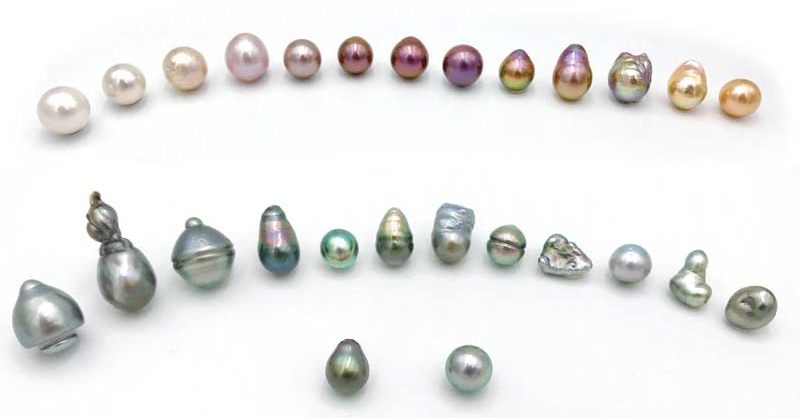 Some of the different shapes and colours of Kasumiga cultured pearls (above) and different shapes and surface qualities of uncultured Tahitian pearls (below).