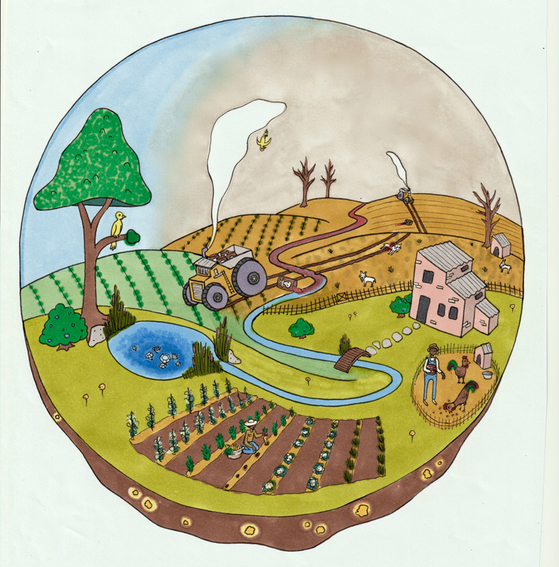 Illustration by Allyssa Barstow (alyssathefriend.com)/courtesy Marc Choyt Reflective Jewelry